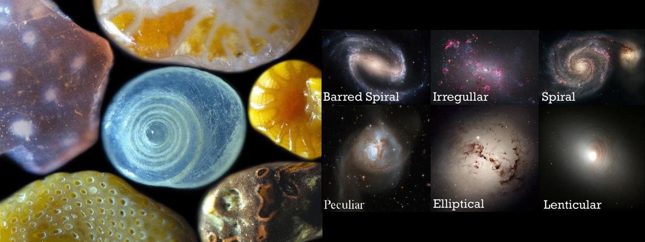 Galaktik benzerlik