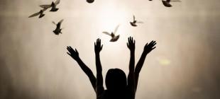Özgür İrade Var Mı?