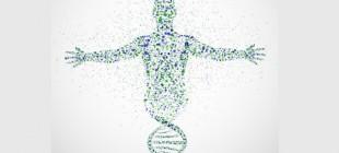Minicik Bir DNA Parçası Yeter