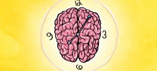 Beynimizin Saati: Zaman Algısının Sinirbilimi