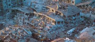 Hayvanlar Gerçekten Depremi Tahmin Edebilir Mi?
