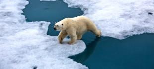 İklim Değişikliği ve Küresel Isınma Eğitimi ODTÜ'de