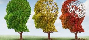 Beyniniz Her Mevsim Farklı Mı Çalışıyor?