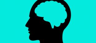 Beynin %90'ı Olmadan Yaşamak Mümkün Mü?