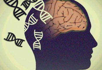 Şizofreninin Gen Karmaşası