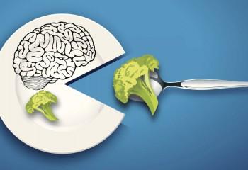 Beyni Yaşlanmaktan Koruyan Besinler – I