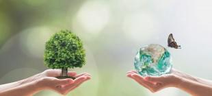 Doğayla Yeniden Bağ Kurmak