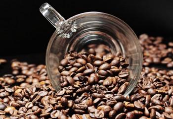 Kahve bizi nasıl uyandırıyor?
