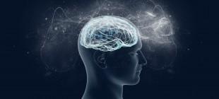 Uyumak Beyni Küçültüyor ve Bu Sayede Öğreniyoruz